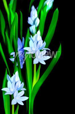 Fototapet Lazurowe Kwiaty