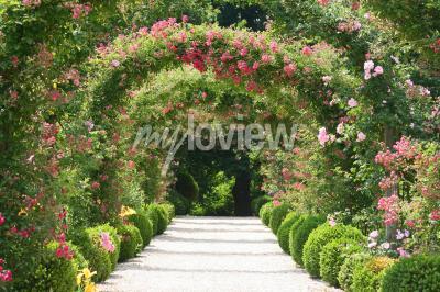 Fototapet Rose Arch I trädgården