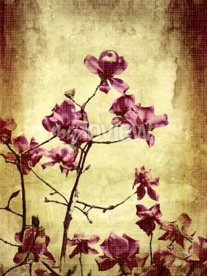 Fototapet Vacker grunge bakgrund med magnoliablommor