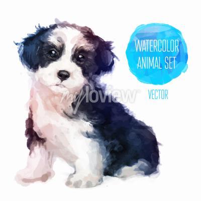 Affisch Hund handmålade akvarell illustration