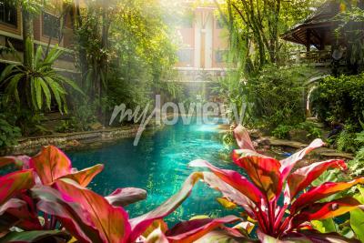 Fototapet Jungle swimmingpool stil under träd och hus bakgrund vid solsken tid