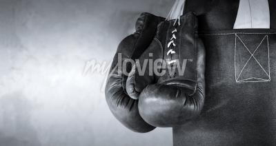 Fototapet Boxing gloves