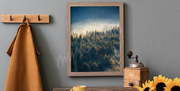 Affisch skog i berg