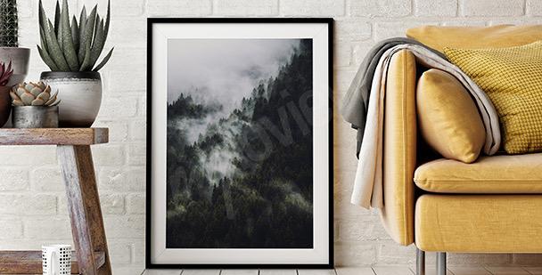 Affisch skog i dimma
