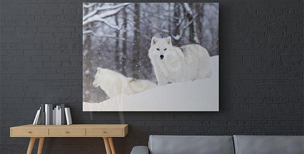 Canvastavla arktis djur