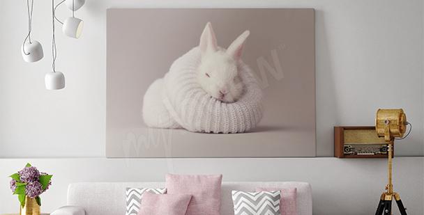 Canvastavla en vit kanin