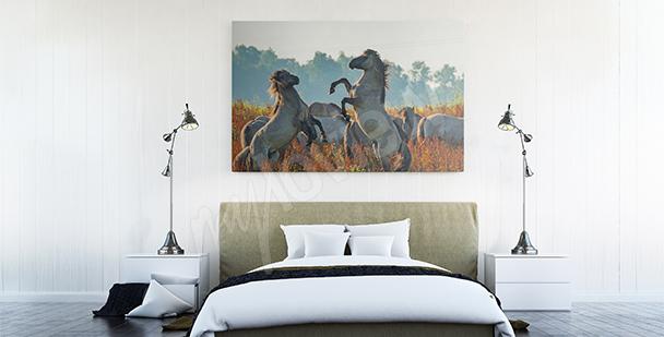 Canvastavla hästar på ängen