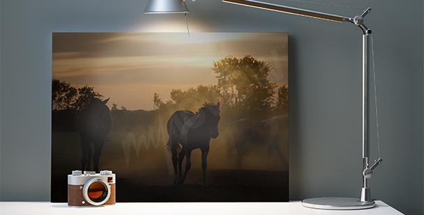Canvastavla hästars silhuett