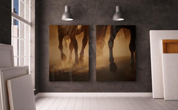 Canvastavla med häst i diptyk