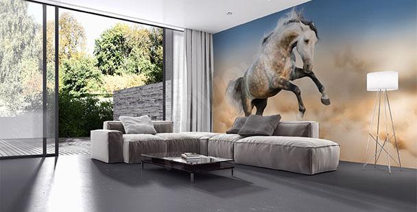 Fototapet med häst