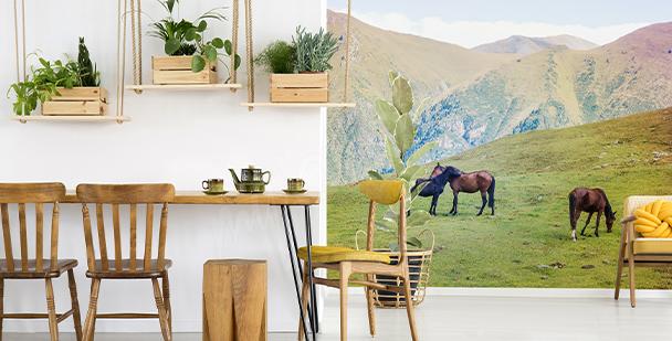 Fototapet med hästar i berg