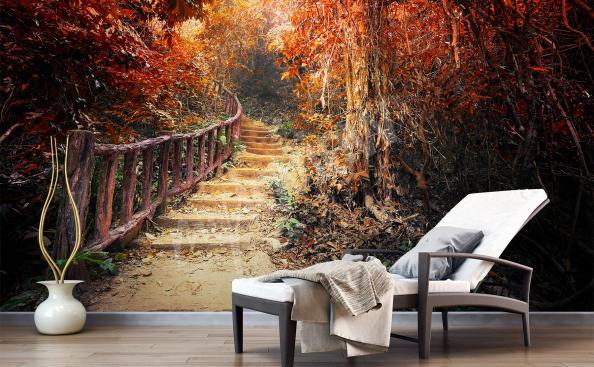 Fototapet med skog i höst