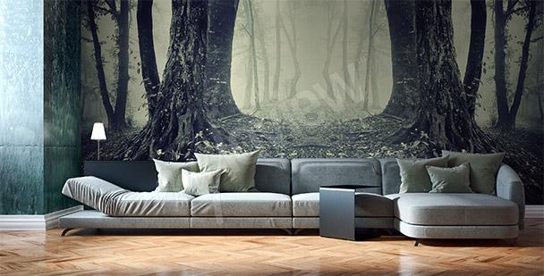 Fototapet med trädstammar
