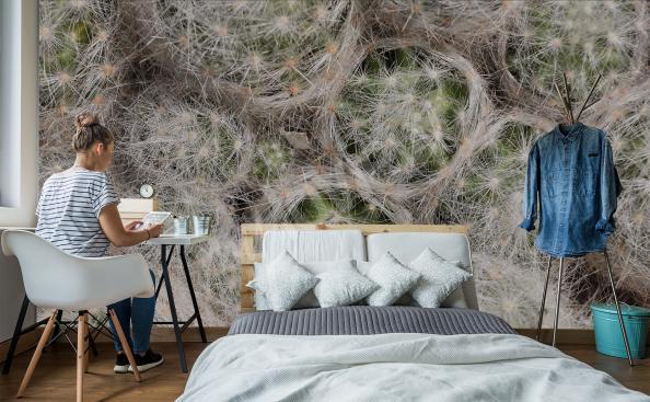 Fototapet textur med kaktusar