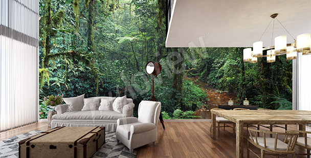 Fototapet träd i djungeln