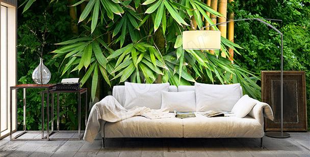 Fototapet tropiska träd
