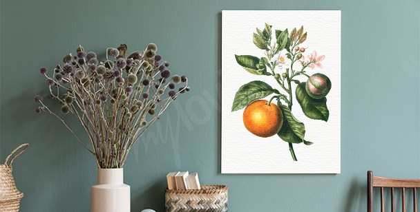 Tavla med citrusfruktträdets gren